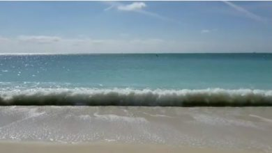 Photo of Fort Zachary Taylor Beach Video